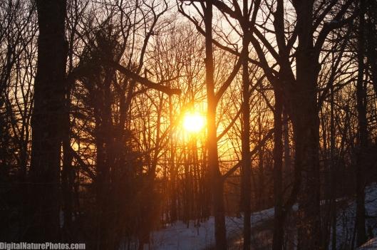 Winter-0025SM.jpg