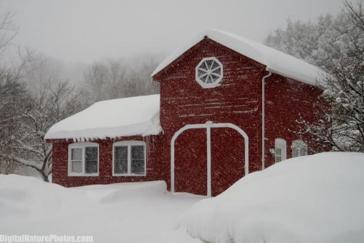 Winter-0081SM.jpg