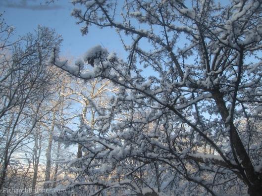 Winter-0014-sm.JPG