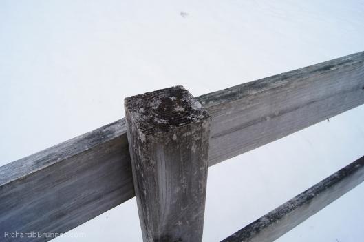 Winter-0035-sm.JPG