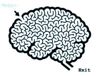 Brain-0008.jpg